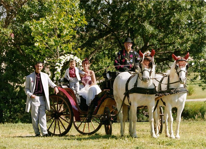34attelage anime les crmonies de mariage en proposant damener les futurs poux la mairie et ventuellement aux offices religieux en calche - Mariage En Caleche